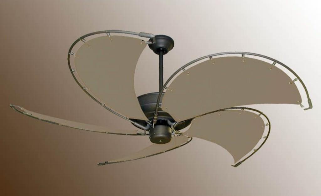 Raindance Nautical Ceiling Fan Ideas Roni Young