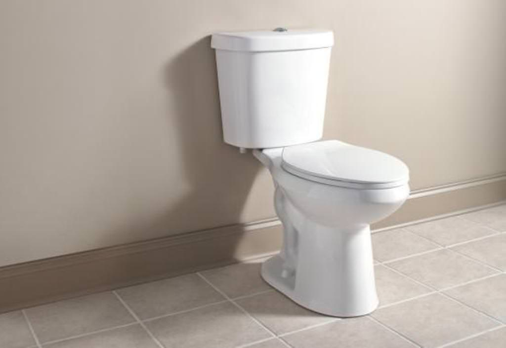 Home Depot Toilets Comfort Height Ideas Roni Young From
