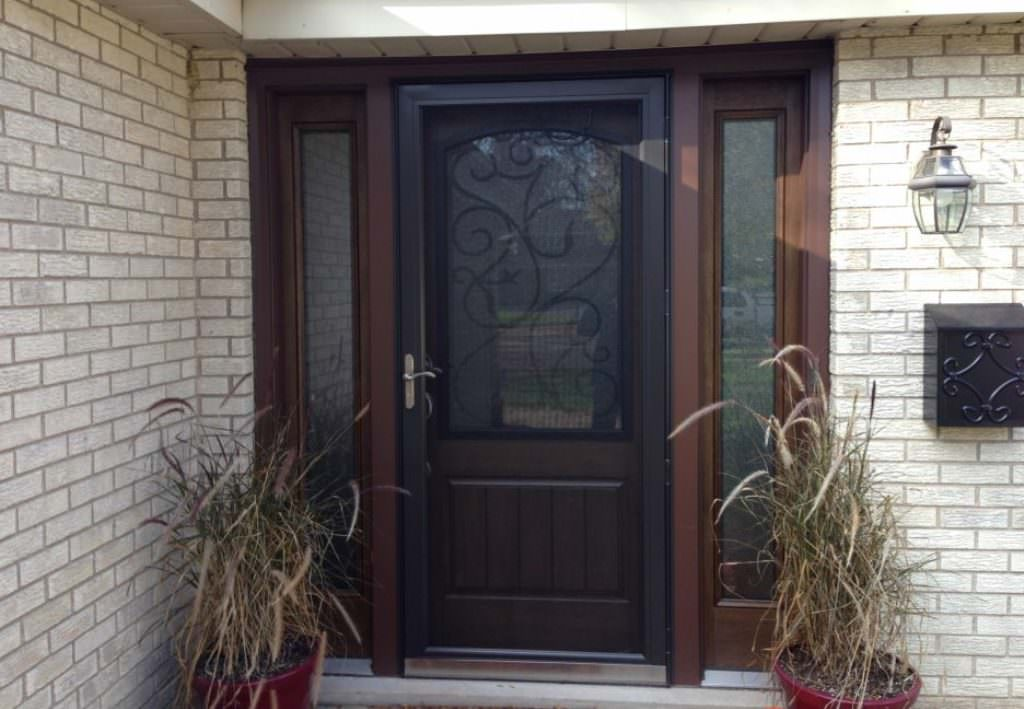 Lowes Storm Doors Ideas Roni Young From Quot A History Of